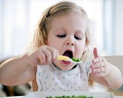Правильное питание для новичков: ТОП-5 основных принципов