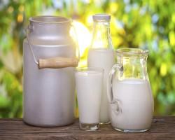 Ученые: парное молоко опасно для здоровья